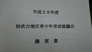 DSC_0528